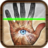 Palm Reader's picture